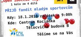 Open iboccia liga SPP